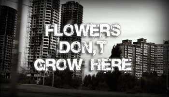 Flowers Don't Grow here